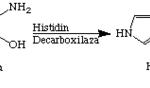 Descompunerea histaminei